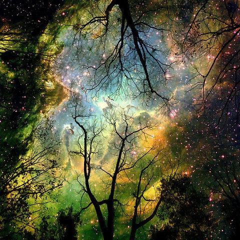 the Faery Universe